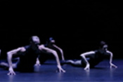 Sydney Dance Company - Interplay - Raw Models (Preview)